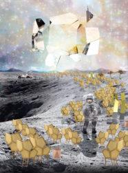 Série Limitée - Morgane Le Gall